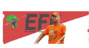 EFF Marshall Dlamini